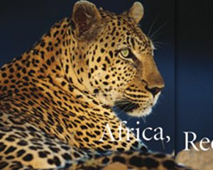 A&K — Africa
