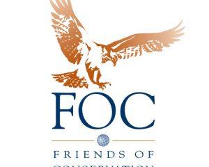 FOC Logo